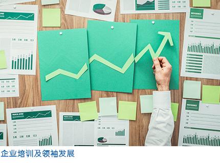 企业培训及领袖发展